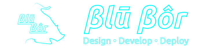 Blu Bor, LLC. || IT & Web Services || Meridian, ID